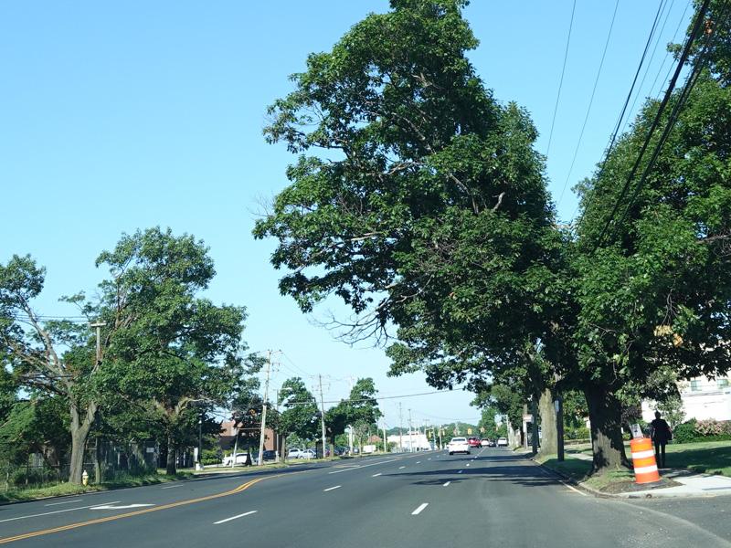 East Coast Roads - Stewart Avenue (Nassau CR 177) - Photo Gallery